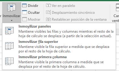 Excel_Inmovilizar